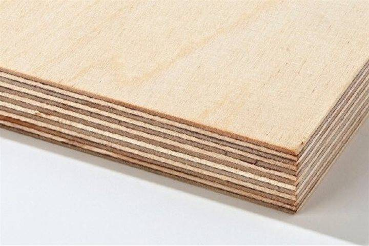 birch plywood latham timber